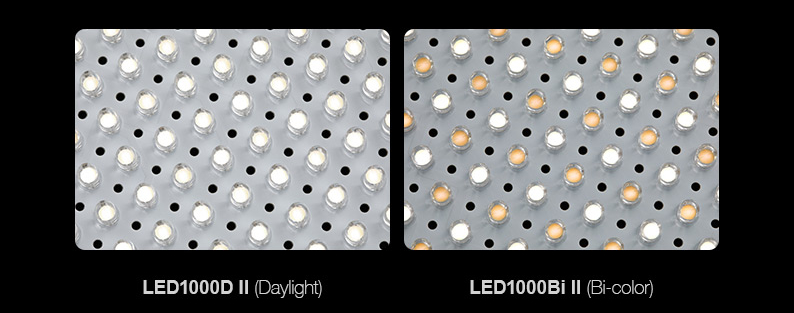 Products_Continuous_LED1000II_04.jpeg